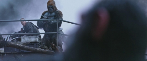 War for the Planet of the Apes 051