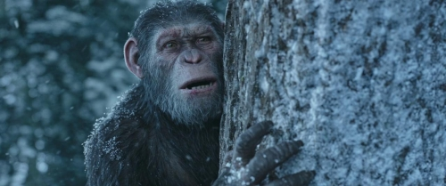War for the Planet of the Apes 056