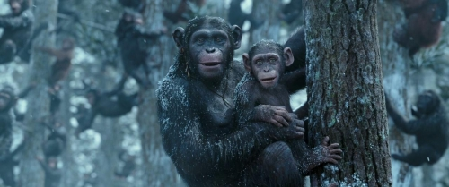 War for the Planet of the Apes 057