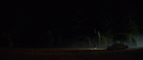 Woodshock 051