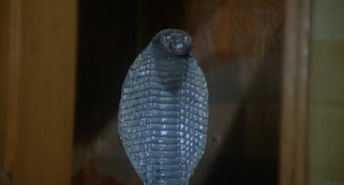 mummystomb011